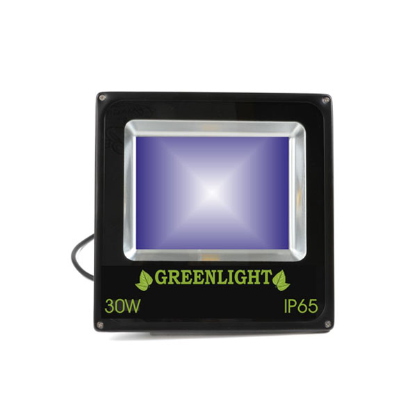 פרוז'קטור לד 30W תאורת הצפה לד LED Floodlight 12v צבע כחול