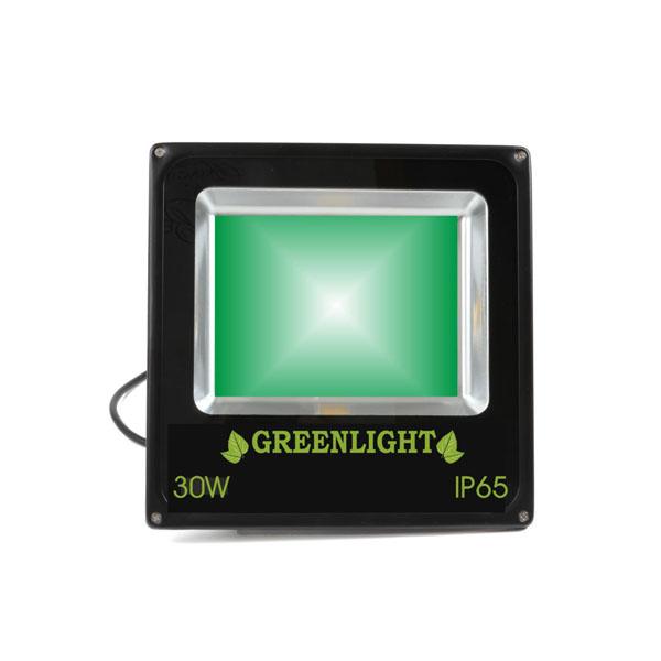 פרוז'קטור לד 30W תאורת הצפה לד LED Floodlight 12v צבע ירוק