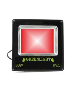 פרוז'קטור לד 30W תאורת הצפה לד LED Floodlight 12v צבע אדום