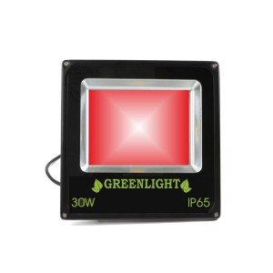 פרוז'קטור לד 30W תאורת הצפה לד LED Floodlight 12v צבע אדום